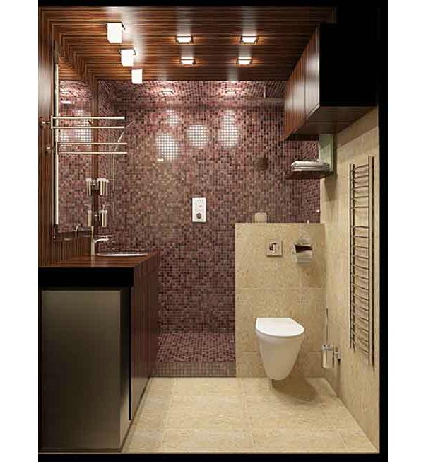 ванной комнаты совмещенной с туалетом