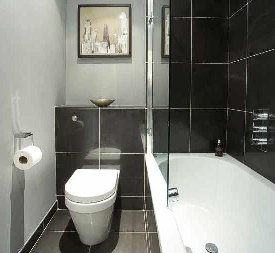 как совместить туалет с ванной в брежневке
